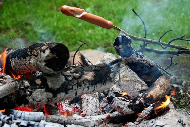 Nothings says camping like cooking a hotdog over the fire